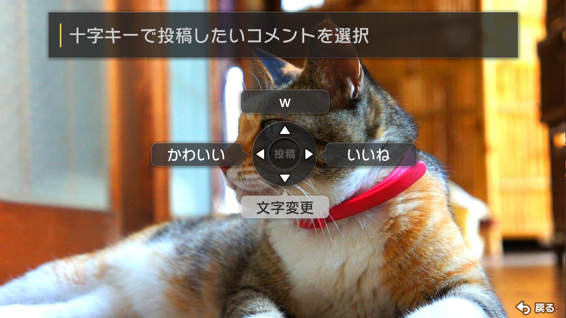 動画プレイヤー簡単コメント.jpg