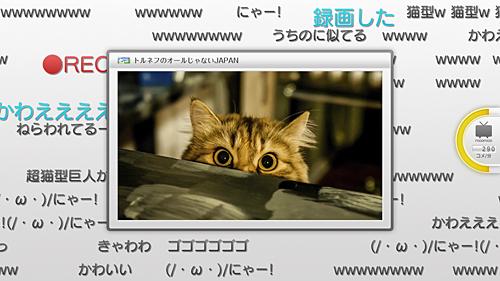 img_update_450_nico_tv.jpg