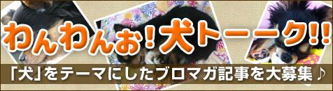 wanwan_kensaku.jpg