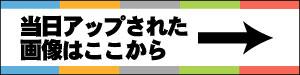 バナー2_ブロックノート.jpg