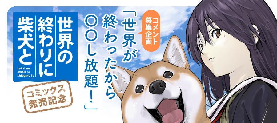 フラッパー_柴犬募集201811.jpg